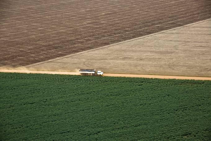 Caminhão viaja entre plantações de algodão e soja, em Mato Grosso (Paulo Fridman/Corbis/Getty Images)